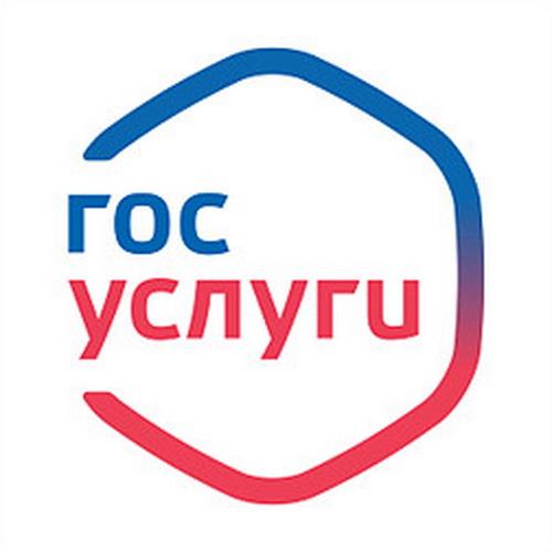 Воронежская область заняла 3 место в ЦФО по использованию электронных госуслуг