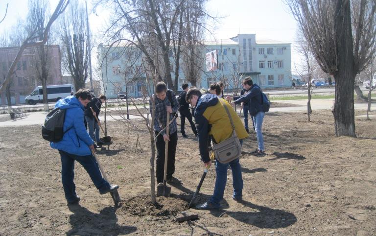 Школьники и студенты вышли на уборку парка