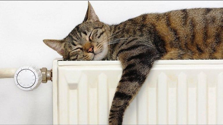 Температура теплоносителя регулируется законодательством